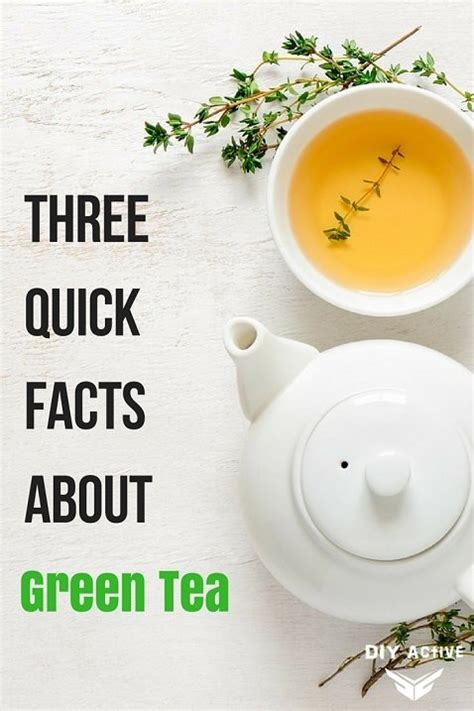 facts about green three quick facts about green tea diy active