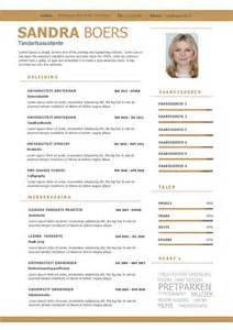 Curriculum Vitae Word Template by Een Overzichtelijk Cv Motivatiebrief In Goud En Wit