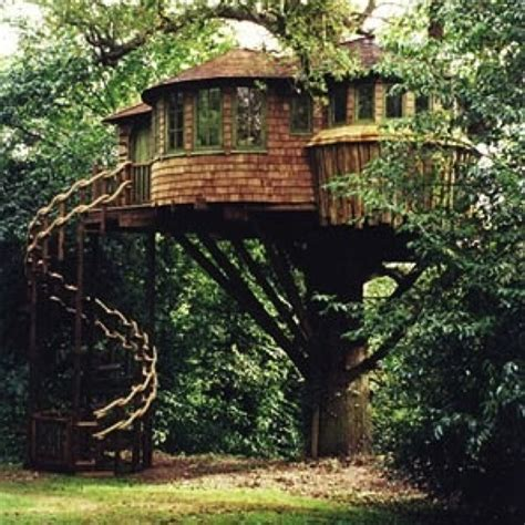 33 best images about tree houses on pinterest disney villas and resorts 17 best images about extreme treehouses on pinterest