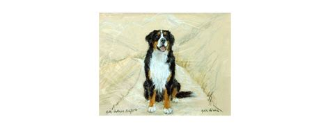 horse home decor mountain home decor bernese mountain dog by gill evans matted horseloverz