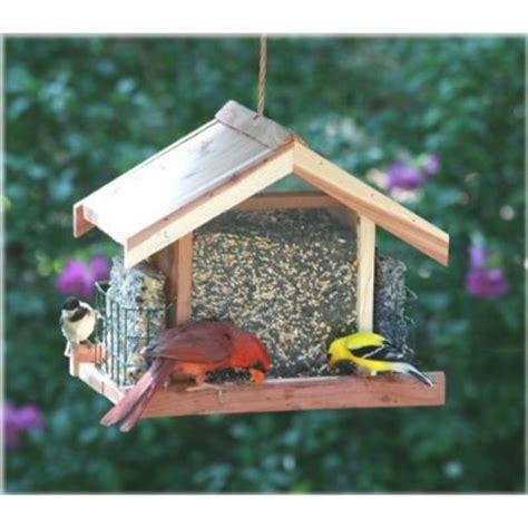 backyard bird feeder best backyard bird feeders