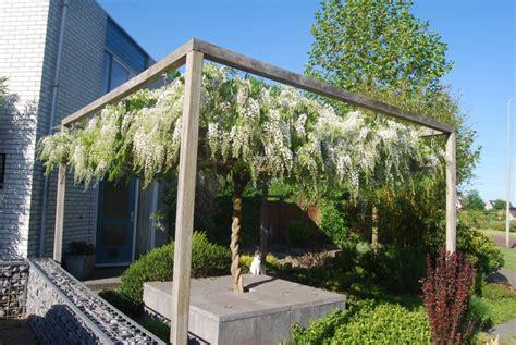 kleine tuin ontwerpen en inrichten bekijk onze tips - Kleine Pergola Designs