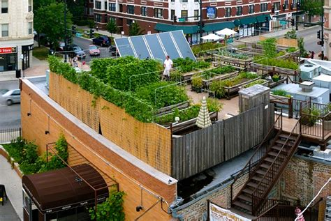the coolest garden to table restaurants in chicago make