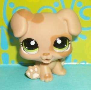 lps boxer puppy lps boxer puppy family 83 84 451 826 no puzzle littlest pet