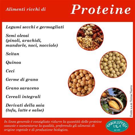 alimenti con piu proteine oltre 25 fantastiche idee su alimenti ricchi di proteine