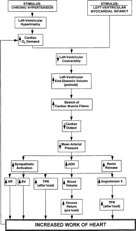 pathophysiology of cesarean section pathophysiology of tetralogy of fallot schematic diagram