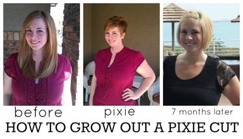 growing out short hair timeline growing out pixie cut timeline www imgkid com the