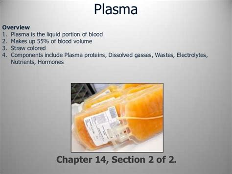 chapter 2 section 2 section 2 chapter 14 blood plasma
