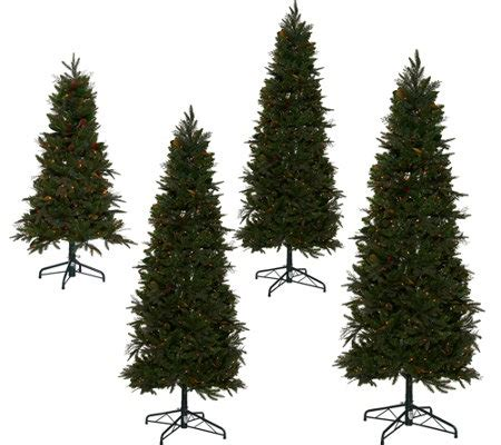 qvc christmas trees bethlehem lights prelit sitka spruce tree qvc