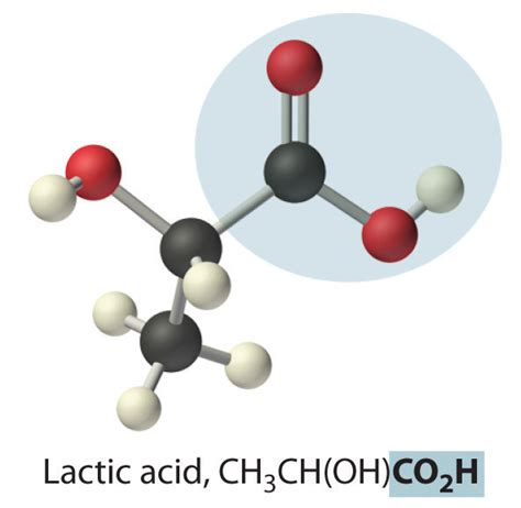 coo h figure acids and bases