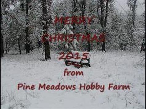 pine meadows christmas tree farm merry 2015 from pine hobby farm