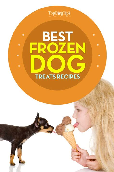 how to cook frozen dogs best frozen treats recipes for summer days top tips