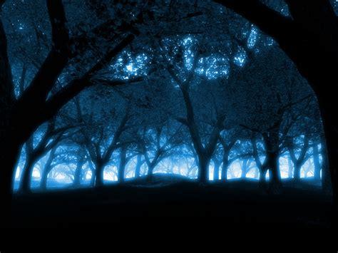 wallpaper blue forest dark blue forest wallpapers 1024x768 250124
