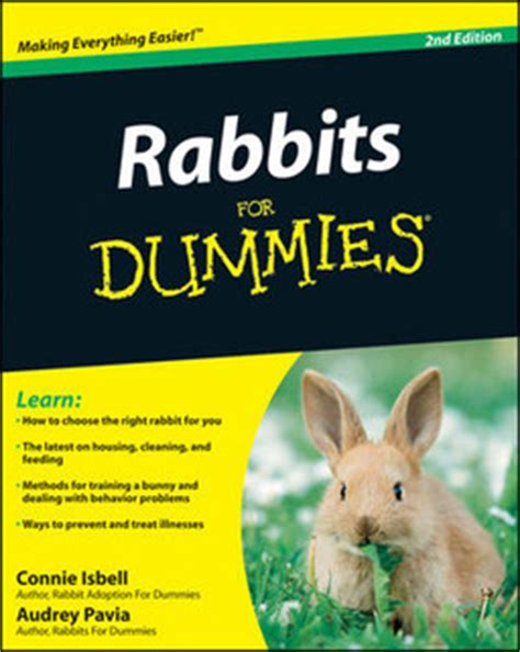 happiness for dummies books bunny things thehoneybunnytree