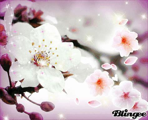 Bj 8873 Big Flower Top flowers picture 55120910 blingee