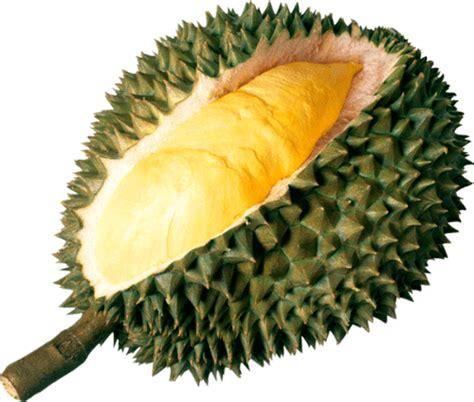 connaissez vous les fruits thailandais