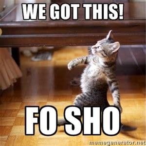 We Got This Meme - we got this fo sho walking cat memes pinterest cat