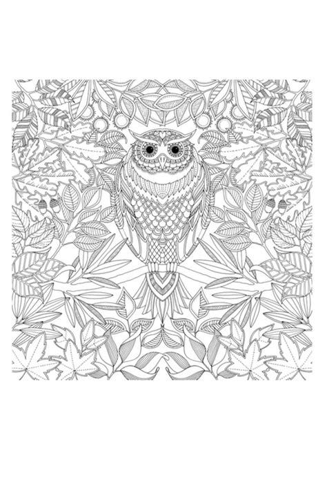 Johanna Basford Secret Garden Coloring Book From
