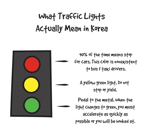 what does a traffic light what traffic lights really in dom hyo