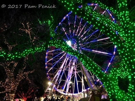 zilker tree lighting 2017 austin shines brightly at trail of lights and zilker tree