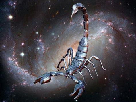 horoscopo de hoy gratis escorpion hor 243 scopo escorpio para hoy tu hor 243 scopo de escorpi 243 n gratis