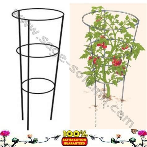 cone trellis cone shaped wire cage for tomato plants and other vine