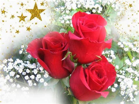 imagenes de rosas para happy birthday 14 im 225 genes de rosas feliz san valentin gif