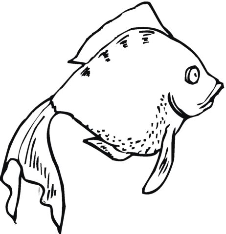 fish coloring page with scales fish with scales coloring pages coloring pages