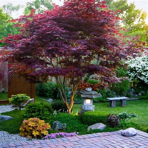 small japanese garden design ideas top japanese landscaping garden top easy backyard garden