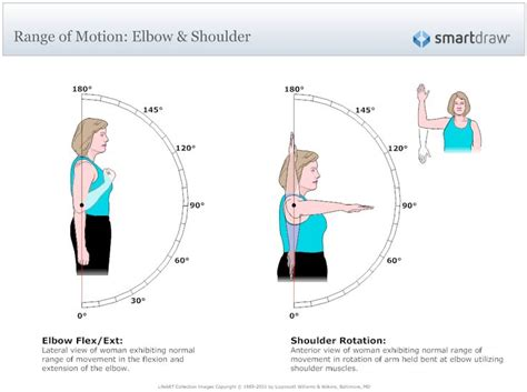 Sport Therapy For The Shoulder Evaluation Rehabilitation And Return 202 best images about ot exercises rom mmt on balance exercises physical therapy
