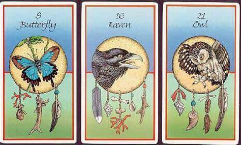 libro animal tarot cards a medicine cards