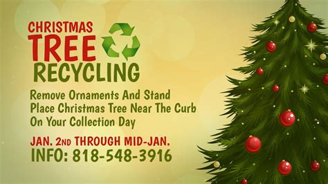 christmas tree recycling issaquah tree recycling program