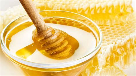 Welcher Honig Ist Am Gesündesten by Honig Als Wundheilmittel Wie Funktioniert S