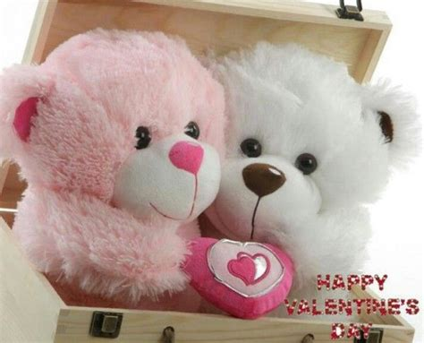 happy valentines day bears happy s day cuddly bears pictures photos and