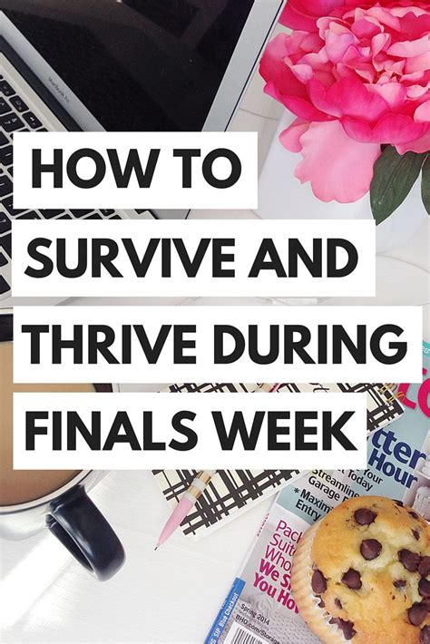 43 best finally finals images on pinterest funny stuff