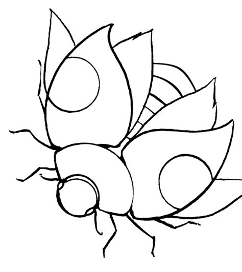 coloring page flying squirrel flying squirrel coloring page az coloring pages