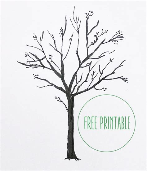 free tree templates free printable blank family tree chris