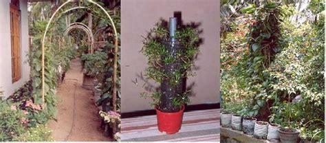 vertical gardens sswm