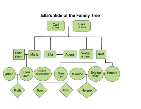 one sided family tree template family tree template family tree template showing siblings