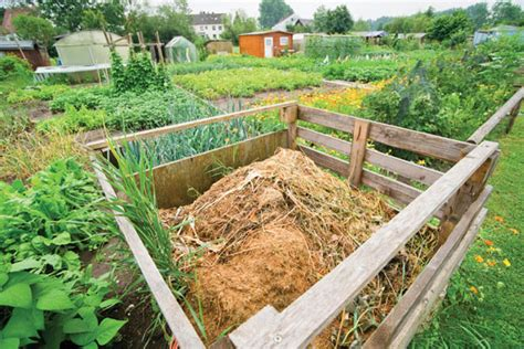 How To Use Compost Gardening Mother Earth Living Compost For Vegetable Garden