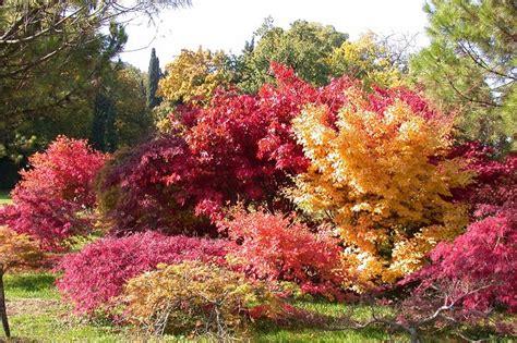 offerta autunno a sirmione hotel la paul vicino