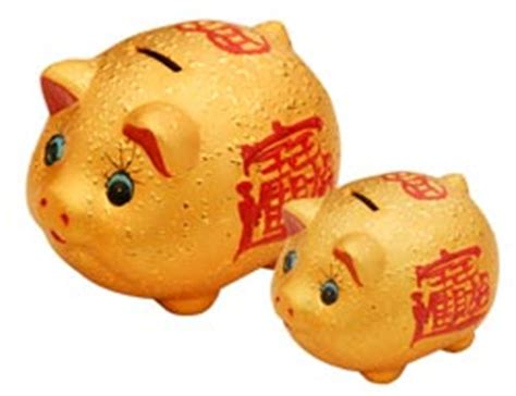 Golden Year Of The Pig 2007 by Superstitions China Mike S Interesting