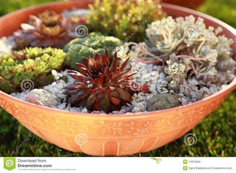 small rock garden images small rock garden stock photo image 14910660