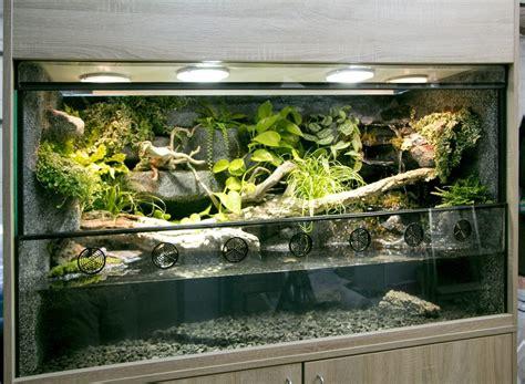 aqua terrarium designs paludarium aquaterrarium f 252 r krokodilschwanzechsen paludarium terrarium