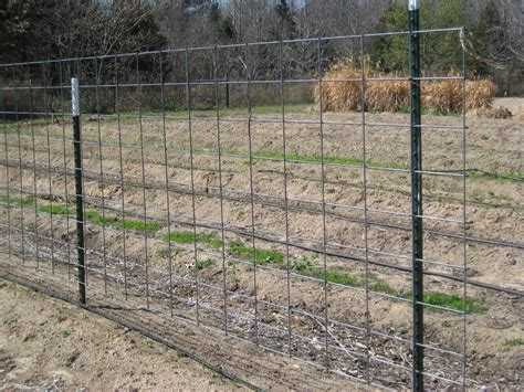 Wire Trellis Panels the gardens of edom structure for vegetable gardens
