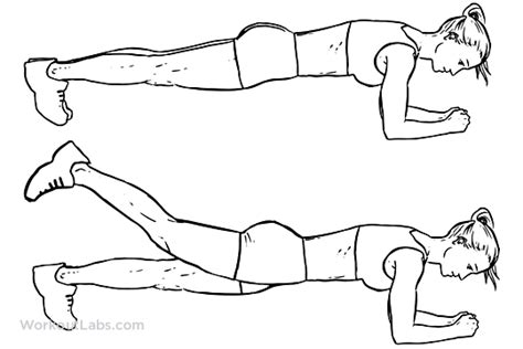plank leg lift illustrated exercise guide workoutlabs