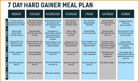 5 Daily Meal Plan Template Authorizationletters Org Daily Meal Planner Template