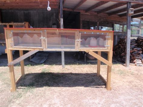 backyard quail pens and quail housing quail pen farming pinterest