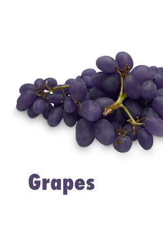 the color purple page count the color purple farfaria