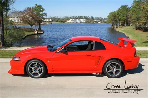 Really Cool Cars For Sale by Really Cool 2000 Ford Svt Mustang Cobra R Cars For